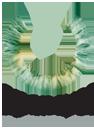 OpenEyes logo