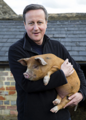 David Cameron and lover