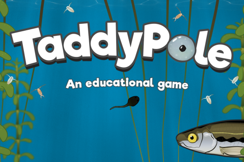 Taddypole screenshot